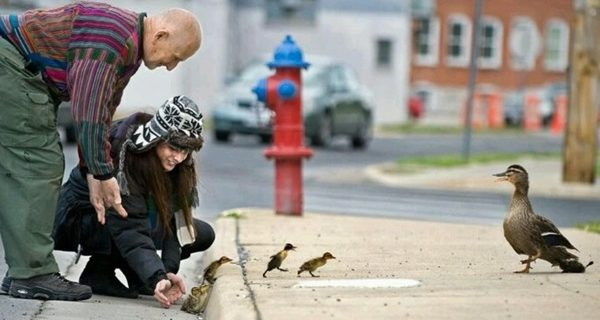 A Arte da Gentileza